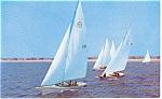 Sailboats Morrisville PA Postcard