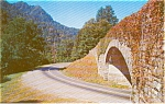 Chimney Tops Great Smoky Mountains National Park Postcard p0462