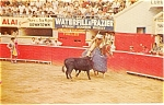 Click here to enlarge image and see more about item p0695: Bull Fighter Mexico Postcard