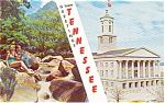 Click here to enlarge image and see more about item p0828: Greetings From Tennessee Postcard