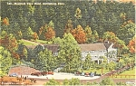 Mt View Hotel GA Postcard p0863
