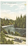 Click here to enlarge image and see more about item p0938: Rainier National Park Postcard 1917