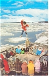 Click here to enlarge image and see more about item p10165: Blanket Tossing Eskimos in AK Postcard p10165