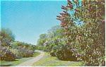 Highway Scene  Morrisville PA Postcard
