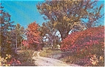 Country Home Morrisville PA Postcard p1021