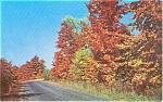 Autumn Road Scene Morrisville PA Postcard