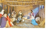 Click here to enlarge image and see more about item p10351: Christus Gardens, TN Nativity Scene Postcard