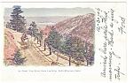 Cheyenne Canon,CO, Bruin Inn Drive Postcard 1906