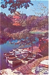 Lake Scene  Rowboats and Dock  Postcard