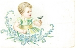 Angelic Child with Bird Postcard