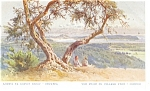 Click here to enlarge image and see more about item p10497: Vue Prise Du Village Vyro Corfou Greece  Postcard p10497