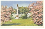 Valley Forge,PA, NJ Monument in Dogwoods Postcard