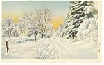 Click here to enlarge image and see more about item p10591: Burlington VT Winter Snow Scene Postcard p10591