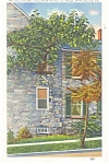Winchester, VA,Nature's Freak Tree Linen Postcard