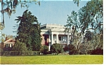 Natchez MS Melrose Postcard p10743