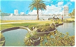 Orlando FL View across Lake Eola Postcard p10794