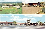 Williamsport PA City View Motel Postcard p10817