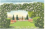 Hershey,PA, Rose Garden Arch of Roses Postcard