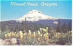 Mt Hood, Oregon Postcard 1967