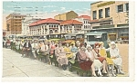 St Petersburg,FL, The Green Benchers Postcard