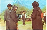 Group of Amish at Public Sale Postcard