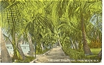 Palm Beach FL Lake Shore Trail Postcard p11534 1912