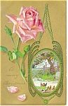 A Merry Christmas Rose Postcard 1908