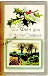 Christmas Postcard Holly and Berries 1910