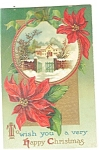 Christmas Postcard Poinsettia, Snow Scene