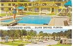 Silver Springs,FL, Thunderbird Motel Postcard cars 50s