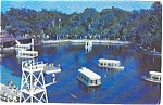 Silver Springs Boats Florida   Postcard