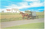 Amish Buggy Passing Amish Farm Postcard