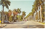 Royal Palms Ft Myers FL Postcard p11921 1953