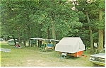 Cook Forest State Park, PA , Campgrounds Postcard