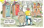 They're Well Built Here Outhouse Postcard