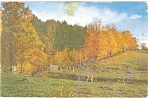 Vermont Farm in Autumn Postcard