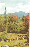 Green Mountains of Vermont Postcard