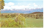 Click here to enlarge image and see more about item p12254: Crazy Mountains of Montana Postcard