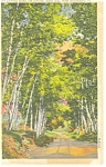 West Brattleboro,VT, Ames Hill Postcard 1958