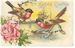 Click here to enlarge image and see more about item p12372: Birthday Greetings,Birds Postcard