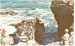 Click here to enlarge image and see more about item p12396: Bar Harbor, ME, Thunder Hole Postcard 1973