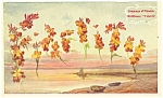 Language of Flowers Postcard Wallflower Fidelity