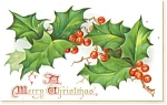 Click here to enlarge image and see more about item p12491: Merry Christmas Raphael Tuck Postcard p12491