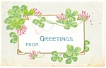 Greetings Postcard Clover and Flowers
