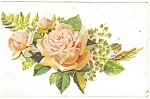 Embossed Rose Postcard 1909