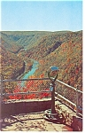 Click here to enlarge image and see more about item p12745: Fall View at Pennsylvania Grand Canyon Postcard p12745