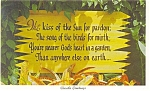 Click here to enlarge image and see more about item p12800: The Kiss of the Sun Poem Postcard
