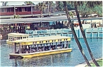 Silver Springs,FL,Glass Bottom Boats Postcard 1966