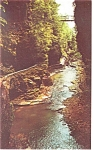 Still Water Gorge Watkins Glen NY Postcard p12824