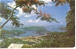 Charlotte Amalie US Virgin Islands Postcard p12861